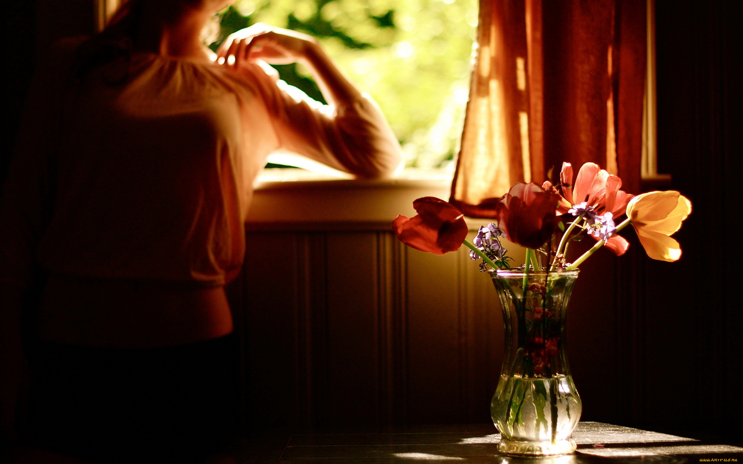 Цветы на окне вечером фото